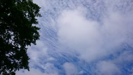 """Cloud illution""(a hugh heart in the sky.look!After the rain gone-clear blue sky again..pritty view!"