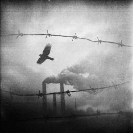 Dilapidation Of All, photographie de Zewar Fadhil