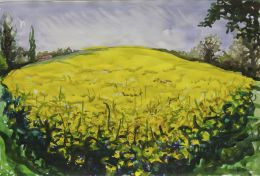 Field of Rape seed, Sudbury by Christopher Ryland