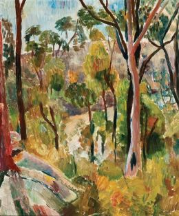 Grace Cossington Smith Bush in the National Reserve