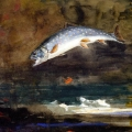 Homer - Jumping Trout