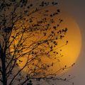 Moon & its beauty......