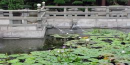 Nan Lian pond