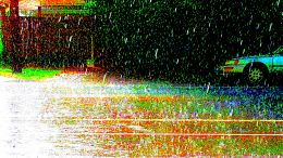 Pavement Rain
