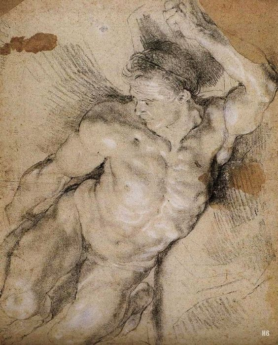 Peter Paul Rubens - Male Nude Study, chalk on paper ""