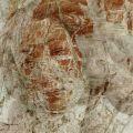 "Saatchi Online Artist: Gonçalo Castelo Branco; Photomanipulation, 2012, Digital ""LAST FIRST KISS '12"""