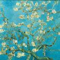 Vincent Van Gogh: Almond Blossom