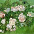 Vincent van Gogh: Still Life - Pink Roses, 1890