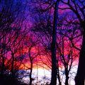Winter sky-set....bo olsen